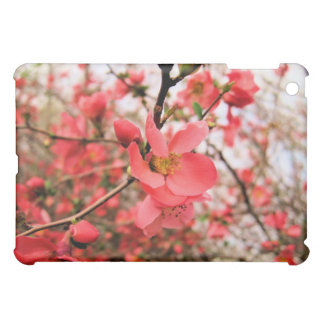 Japonica florece caso del iPad