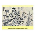 Japonica, flores y anémona por Tachibana, Yasukuni Postales