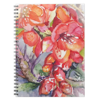 Japonica Note Books