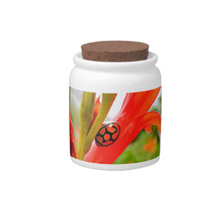 Jar with red flower and ladybug candy jars