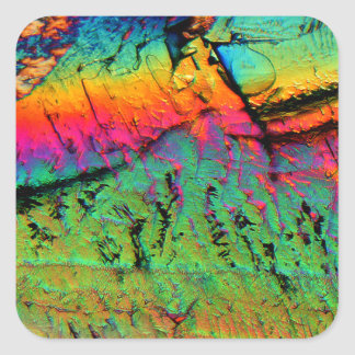jarabe de arce debajo de un microscopio