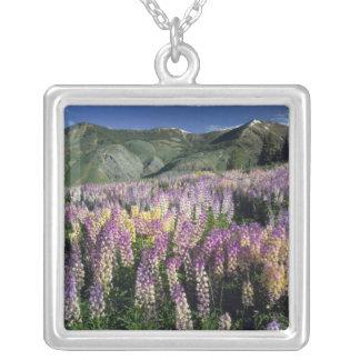 JARBIDGE WILDERNESS, NEVADA. USA. Spur lupine Silver Plated Necklace