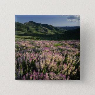 Jarbridge Wilderness and Mountains, Nevada, Spur Pinback Button