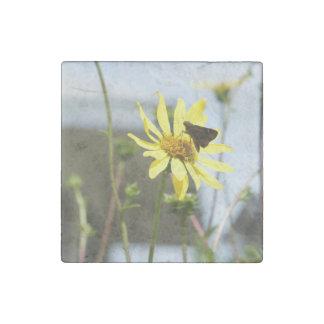 Jardín 2 de la mariposa imán de piedra