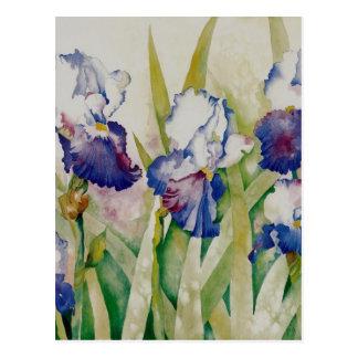 jardín 2 del iris postal