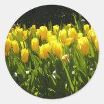 Jardín amarillo del tulipán pegatina redonda