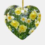 Jardín amarillo hermoso del narciso ornamente de reyes