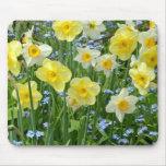 Jardín amarillo hermoso del narciso tapete de ratones