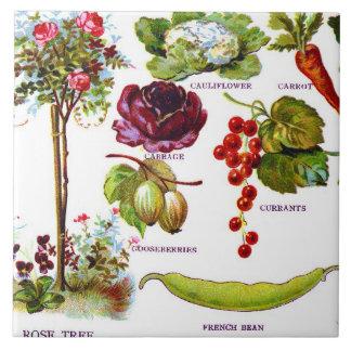 Jardín Botanicals del verano Azulejo Cuadrado Grande