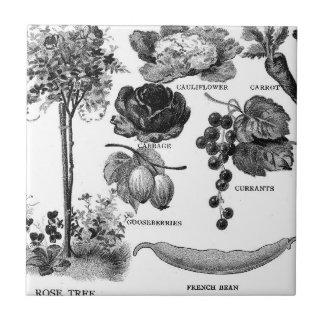 Jardín Botanicals del verano en negro y blanco Azulejo Cuadrado Pequeño