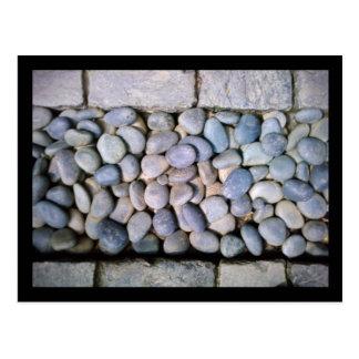jardín botánico de Chicago:: trayectoria de la roc Postales