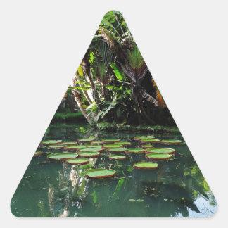 Jardín botánico de Río Pegatina Triangular