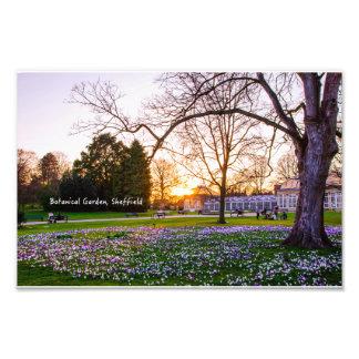 Jardín botánico en Sheffield Fotografía