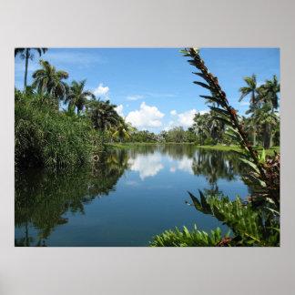 Jardín botánico tropical de Fairchild Posters