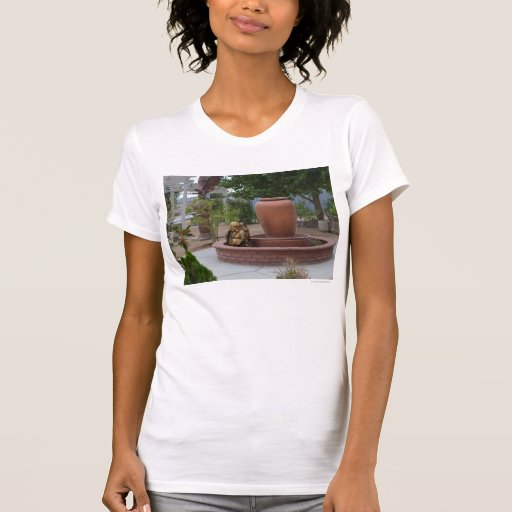 Jardín budista en CA Camisetas