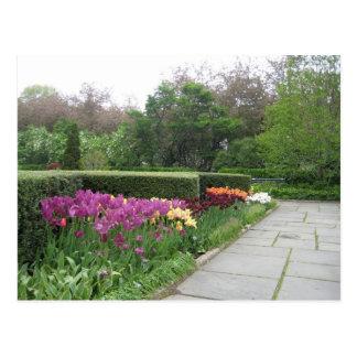 Jardín conservador (Central Park, New York City) Tarjeta Postal