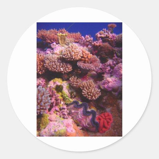 Jardín coralino pegatina redonda
