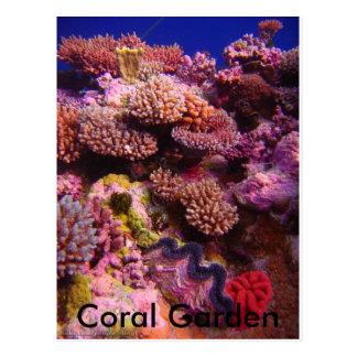Jardín coralino postal