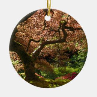 Jardín de Acer Palmatum Portland del arce japonés Adorno