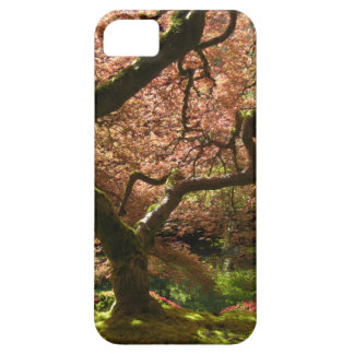 Jardín de Acer Palmatum Portland del arce japonés iPhone 5 Cárcasa