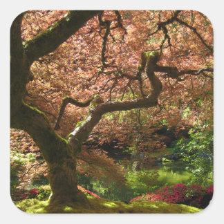 Jardín de Acer Palmatum Portland del arce japonés Pegatinas Cuadradases