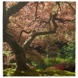 Jardín de Acer Palmatum Portland del arce japonés Servilleta