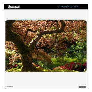Jardín de Acer Palmatum Portland del arce japonés Calcomanías Para El MacBook