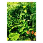 Jardín de Amarilis en un día soleado Tarjeta Postal