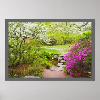 Jardín de Asticou Azelea en la primavera, puerto Poster