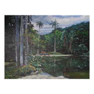 Jardin de Botanica in Rio de Janeiro (Pond) Posters