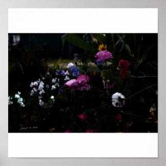 Jardín de Courtry en el claro de luna 1 Impresiones