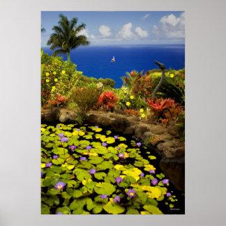 Jardín de Eden - Maui - Hawaii Póster