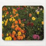 Jardín de flores alfombrillas de ratones