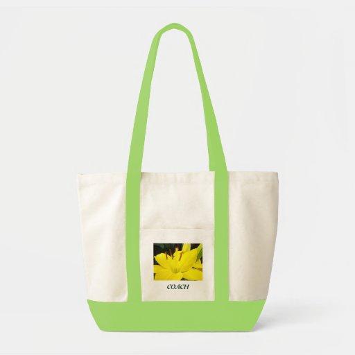Jardín de flores amarillo del lirio de las bolsas