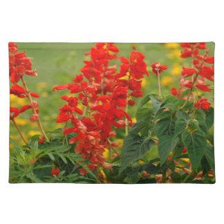 Jardín de flores candente ardiente de Sally Salvia Manteles Individuales