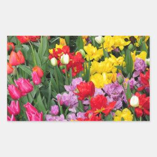 Jardín de flores colorido de la primavera rectangular pegatinas