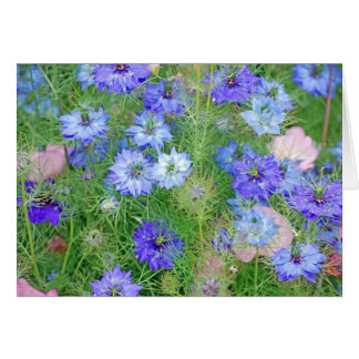 Jardín de flores de California Tarjeta De Felicitación