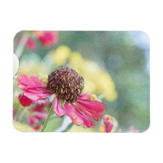 Jardín de flores de la tarde - Heleniums Imán Flexible