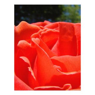 Jardín de flores de papel del rosa rojo de Scrapbo Membrete Personalizado