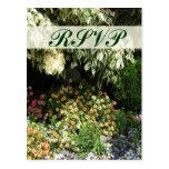 Jardín de flores de RSVP Tarjetas Postales
