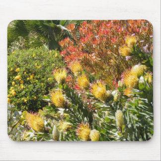 Jardín de flores del desierto alfombrilla de raton