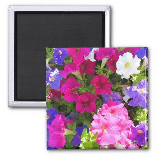 jardín de flores iman de frigorífico