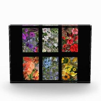 Jardín de flores negro del vitral