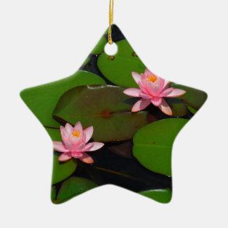Jardín de flores rosado del lirio de agua del loto ornamentos de reyes magos