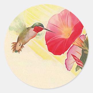 Jardín de flores Throated de rubíes del colibrí Pegatina Redonda