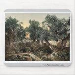 Jardín de Gethsemane, Jerusalén, obra clásica de l Alfombrillas De Raton