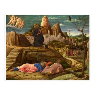 Jardín de Gethsemane Tarjetas Postales