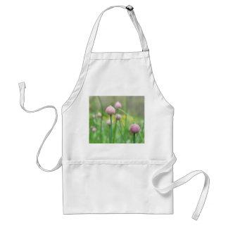 Jardín de hierbas - brotes de la cebolleta delantal