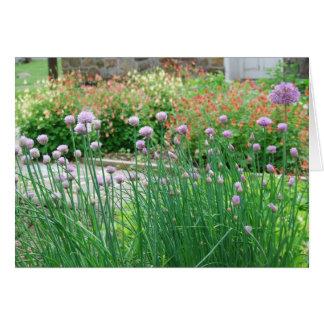 Jardín de hierbas en el parque de Graeme Tarjeta De Felicitación