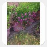 Jardín de hierbas pegatina cuadrada